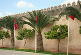 Meknes walls with flags poster