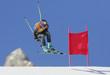 Ski - 6098970