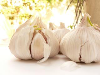 garlic bulbs outdoors