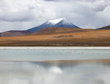 mountain, reflecting in the lake with flamingos, bolivia poster