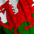 Close up of the Welsh flag, square image