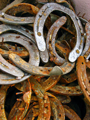 Rusted horseshoes