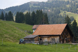 Cattle-breeding farm. Swiss Farm and yard.  poster