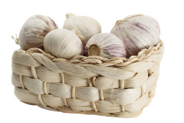 Garlic in the basket on white background