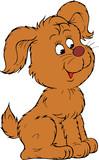 Brown Pup  poster
