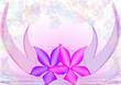 fiori e fiorellini