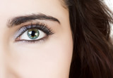 closeup of the beautiful female eye, half face portrait poster
