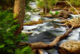Rocky river rapids in wilderness in Ontario, Canada poster