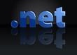 Постер, плакат: net Domain