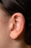 Fototapety Ear