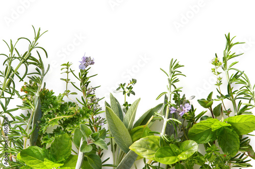 Border of fresh herbs - 6163956