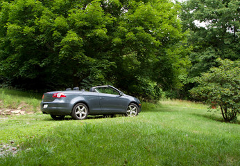 Convertable Parked in a Field