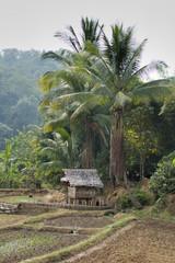 Thailand - village