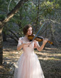 Fiddling In The Forest