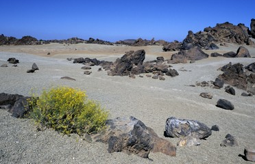 volcanic desert in the caldera of Teide volcano, Teneriffe