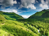 Fototapety Mountain landscape with forest and blue sky