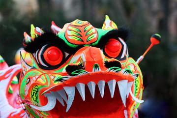 Maschera del Dragone cinese