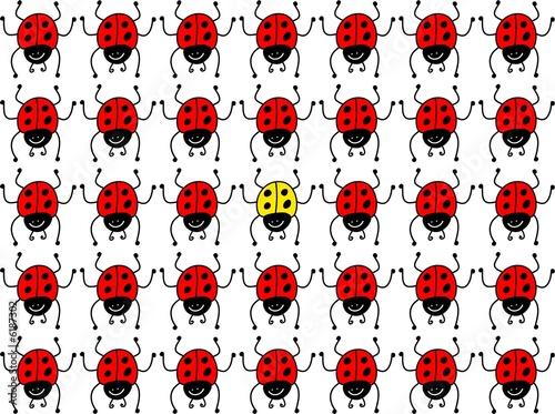 Foto op Canvas Lieveheersbeestjes lost ladybug