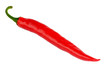 Rote Chilischote liegend - freigestellt auf weißem Hintergrund