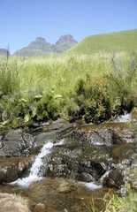 stream in the Drakensberg mountains, Cathedral Peak