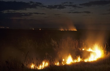 steppe fire in Kazakhstan