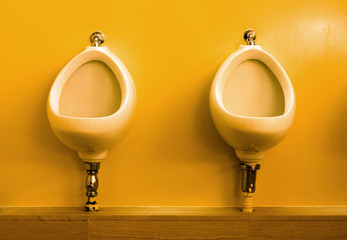 toilette wc cabinet pipi sanitaire