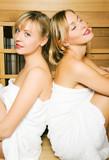 Freundinnen in der Sauna poster