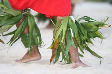 Tahiti danse
