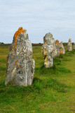 Row of prehistoric megalithic monuments in Brittany, France poster