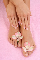 close-ups of beautiful female legs and hands - beauty treatment