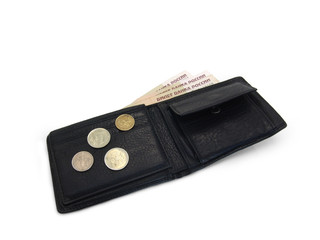Leather purse with money