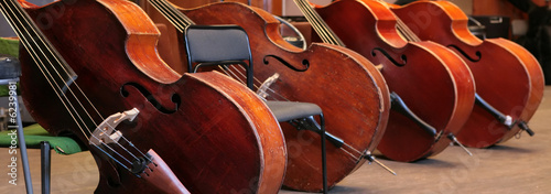 Vintage, music instruments, four old bass viols