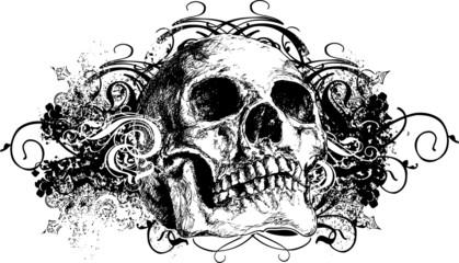 Grunge skull floral illustration