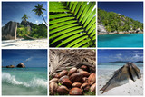 paradis ile tropique exotique lagon océan bleu turquoise poster