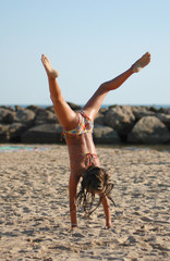 capriola in spiaggia