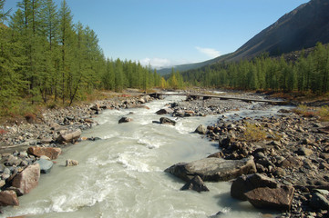 Mountain Altai. Siberia. The river.