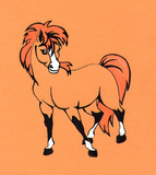 Orange pony  poster
