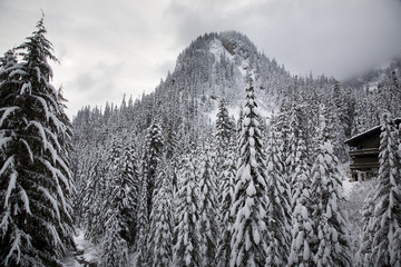Snowy Mountain, Ski Lodge Alpental, Snoqualme Pass, Washington