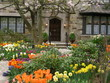 front garden with spring flowers