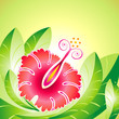vector file of Hibiscus flower and leaf design
