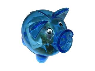 Blue piggy