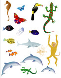 Vector bases illustration of various animals on white background poster