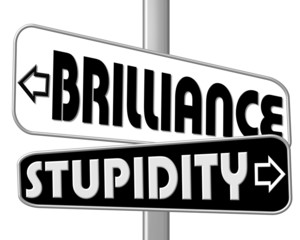 schild brillance - stupidity