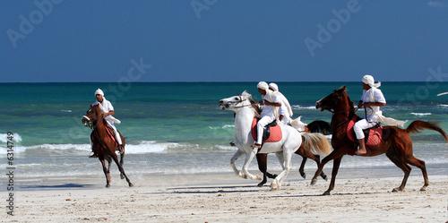 Fotobehang Tunesië showreiter