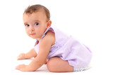 Baby Girl learning how to crawl on white . poster
