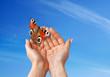 mani con la farfalla