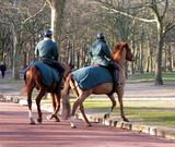 Gardes à cheval dans une allée de parc parisien. poster