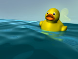 image of a cute rubber duckling in the bathtub poster