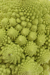 green romanesco cauliflower i background