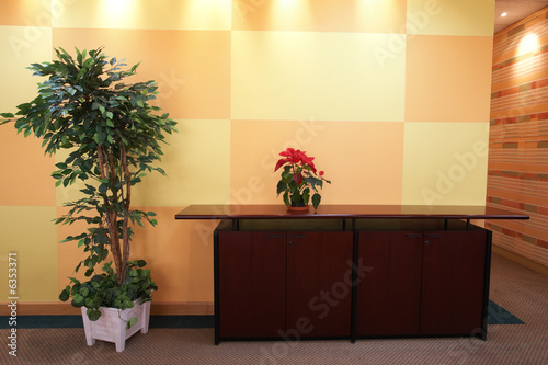 Small plant against an orange block pattern in an office lobby